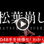 【How To映像?】 日本古来の『48手』を映像化! これはわかりやすいぞwww