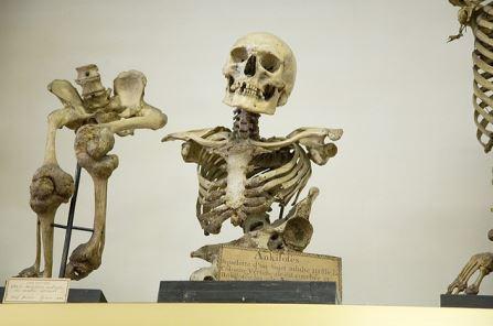 【恐怖】世界No.1の恐怖博物館はパリにあった!!紹介動画は震えが止まりません(;´Д`)3