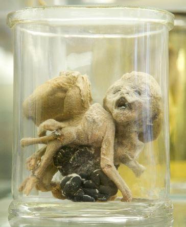 【恐怖】世界No.1の恐怖博物館はパリにあった!!紹介動画は震えが止まりません(;´Д`)16